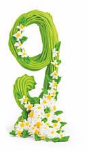 """""""9"""" Цифра ювілейна зелена оформлена"""