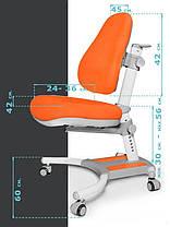 Evo-Kids Omega   Дитяче стілець крісло трансформер для школяра, фото 2