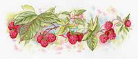 Набор для вышивки крестом М.П.Студия НВ-647 «Садовый аромат»