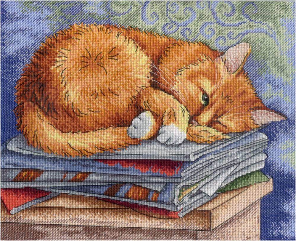 Набор для вышивки крестом М.П.Студия НВ-595 «Кот ученый»