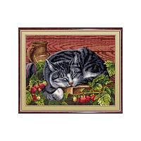 Набор для вышивки крестом М.П.Студия НВ-268 «Спящий котик»