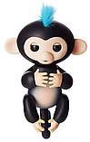 Комплект Мягкая игрушка кот лунный единорог Pusheen cat и Игрушка интерактивная Happy Monkey (vol-666), фото 2
