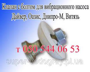 Клапан с болтом для вибрационного насоса Дайвер, Оазис, Днипро-М, Витязь