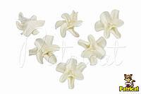 Цветы Жасмин белый с тычинками из фоамирана (латекса) 3 см 10 шт/уп, фото 1