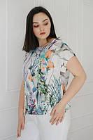 Блузи і сорочки жіночі