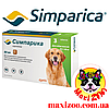 Таблетка Сімпаріка від бліх і кліщів для собак від 20 до 40 кг 1шт