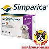 Таблетка Сімпаріка від бліх і кліщів для собак від 2,5 до 5 кг 1шт