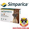 Таблетка Сімпаріка від бліх і кліщів для собак від 40 до 60 кг 1шт