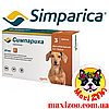 Таблетка Сімпаріка від бліх і кліщів для собак від 5 до 10 кг 1шт