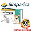 Таблетка Сімпаріка від бліх і кліщів для собак від 10 до 20 кг 1шт