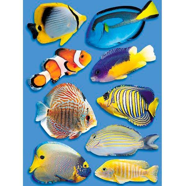 Декоративная наклейка Рыбки 35x49 см