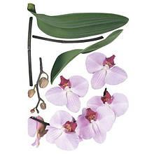 Декоративная наклейка Орхидея 49x70 см