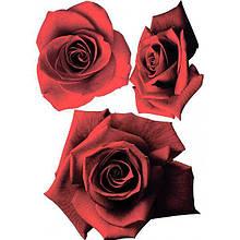 Декоративная наклейка Розы бархат 49x70 см