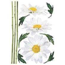 Декоративная наклейка Ромашки 49x70 см