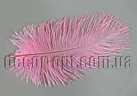 Перо страуса розовое пуховое 12-16см 1сорт