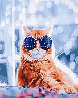 Картина по номерам 40*50 Стильный кот в бокэ