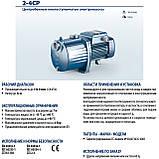 Малошумный центробежный насос Pedrollo 3CPm 100, фото 3