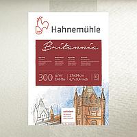 Бумага акварельная Hahnemuhle Britannia 300 г/м², CP, 70 х 100 см, лист