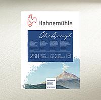 Бумага для масла и акрила Hahnemuhle Oil & Acrylic 230 г/м², 50 x 65 см, лист