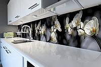 Виниловый кухонный фартук Ветки Орхидей (декоративная пленка наклейка скинали ПВХ) белые цветы на Черном фоне 600*2500 мм, фото 1
