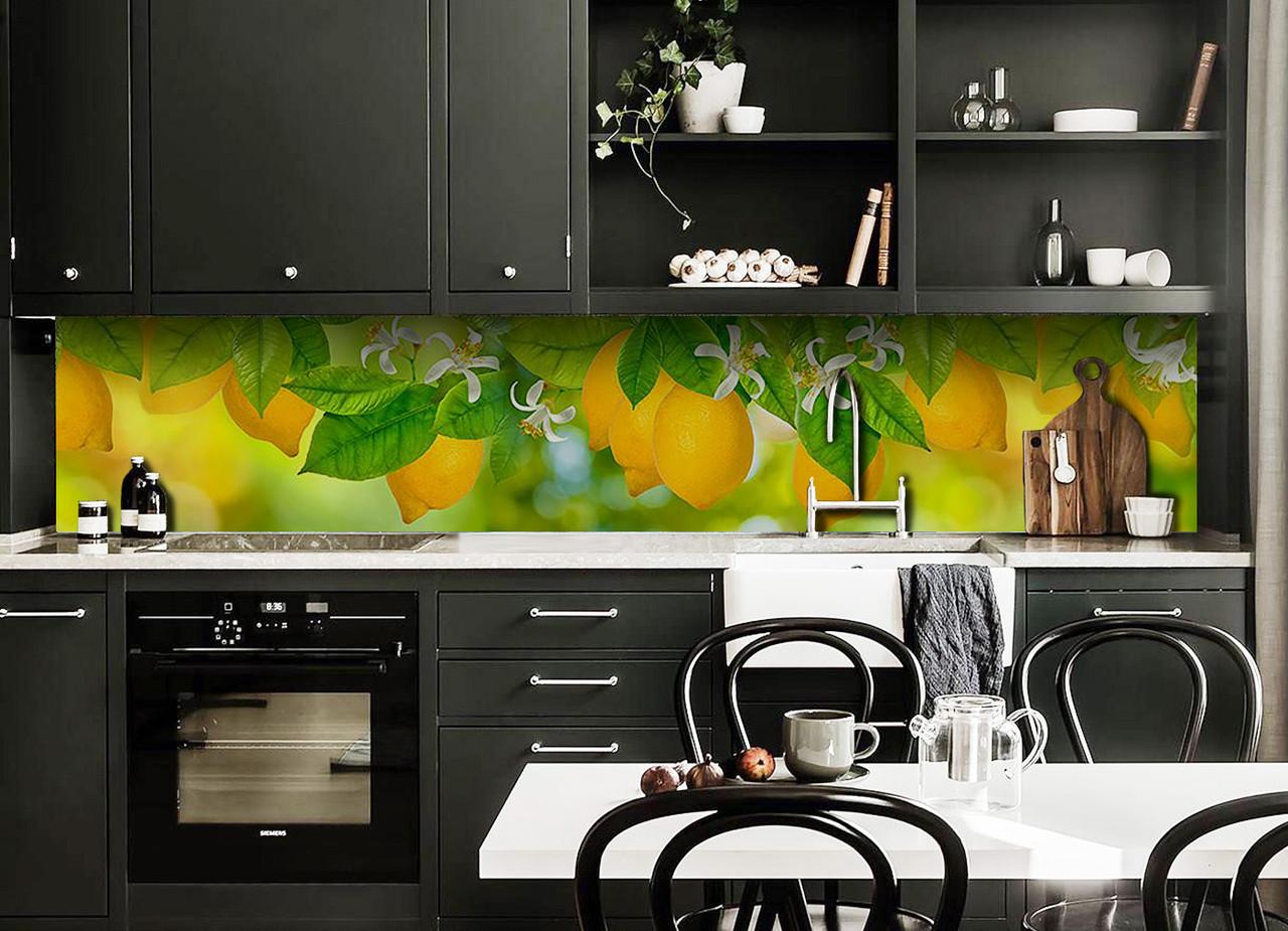 Виниловый кухонный фартук Лимоны (декоративная пленка наклейка скинали ПВХ) цитрусы фрукты Желтый 600*2500 мм