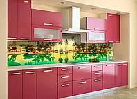 Кухонний фартух Тропічний відпочинок (вінілова плівка наклейка скіналі ПВХ) вода пальми Зелений 600*2500мм, фото 1