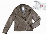 Курточка для девочки кожзам с крыльями на спине (хакки) МОНЕ р-ры 134,140,146, фото 4