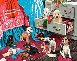 """Картина по номерам """"2//11"""" Сложность: 3 (щенки, собаки, питомцы, собачка, пес, беспорядок)"""