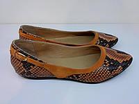 Балетка Etor 3887-1-790 помаранчевий, фото 1