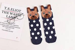 Круті шкарпетки з яскравим принтом шкарпетки з собачкою