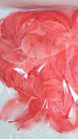 Декоративні коралові пір'я в пакеті(1уп 120-130перьев), фото 1