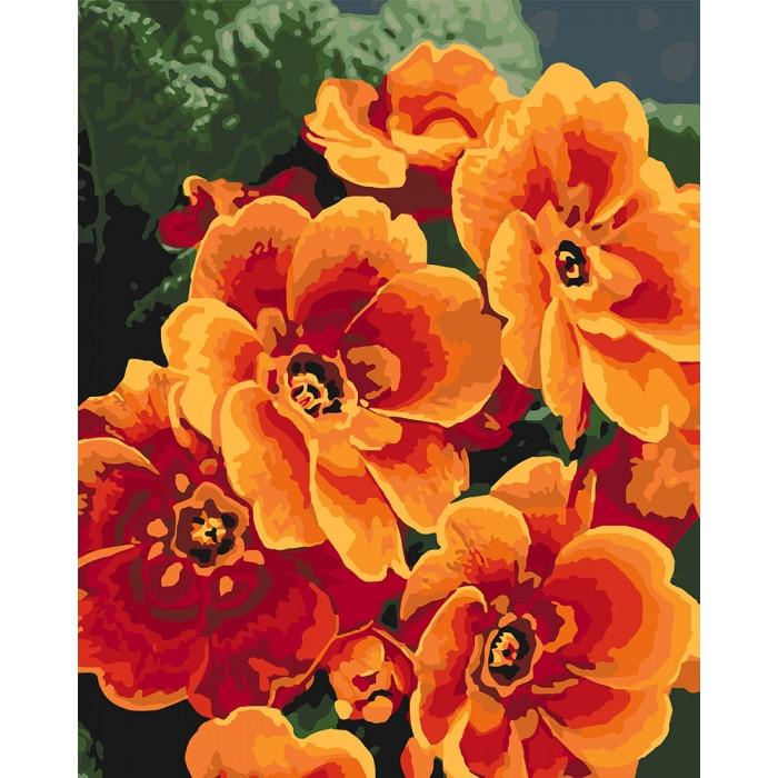 Картина за номерами Примула помаранчева ТМ Ідейка 40 х 50 см КНО3050