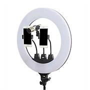 Кільцева LED лампа ZB-F348 45см діаметр | кріплення для 2 телефонів і мікрофона | Пульт ДУ