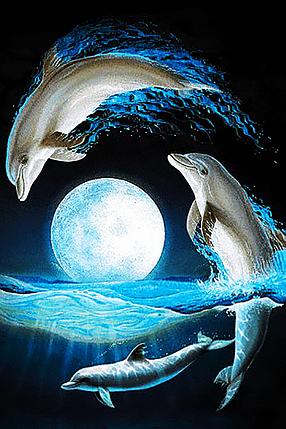 КДІ-0806 Набір алмазної вишивки Сім'я дельфінів, фото 2