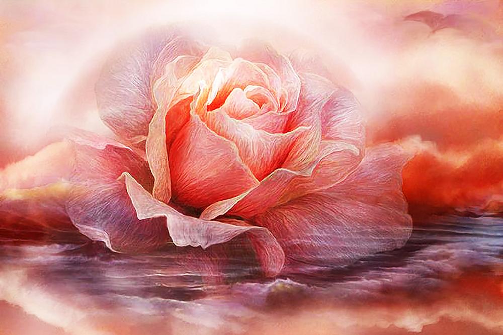 КДИ-0853 Набор алмазной вышивки Лавандовая роза-2. Художник Carol Cavalaris