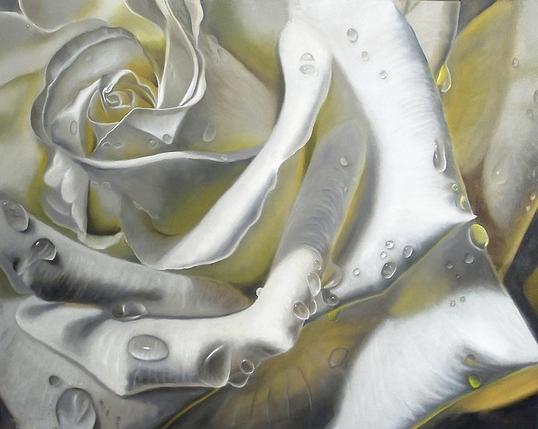 КДІ-0873 Набір алмазної вишивки Біла троянда, фото 2