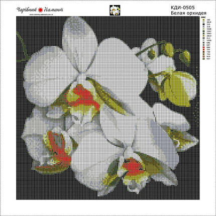 КДИ-0505 Набор алмазной вышивки Белая орхидея-3, фото 2
