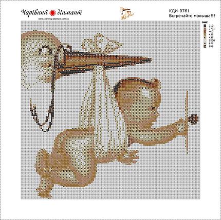 КДІ-0761 Набір алмазної вишивки Зустрічайте, малюка!, фото 2