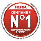 Утюг TEFAL FV1710E0, фото 2