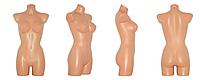 Жіночий Торс Size+