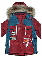 Куртка зимняя для мальчика на био-пухе. Опушка-мех енота