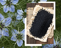 Калинджи (нигелла, чернушка, черный тмин) 1кг