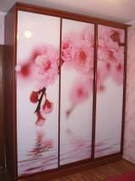 ДВЕРИ для ШКАФА-КУПЕ с рисунками на зеркалах и стеклах фотопечать