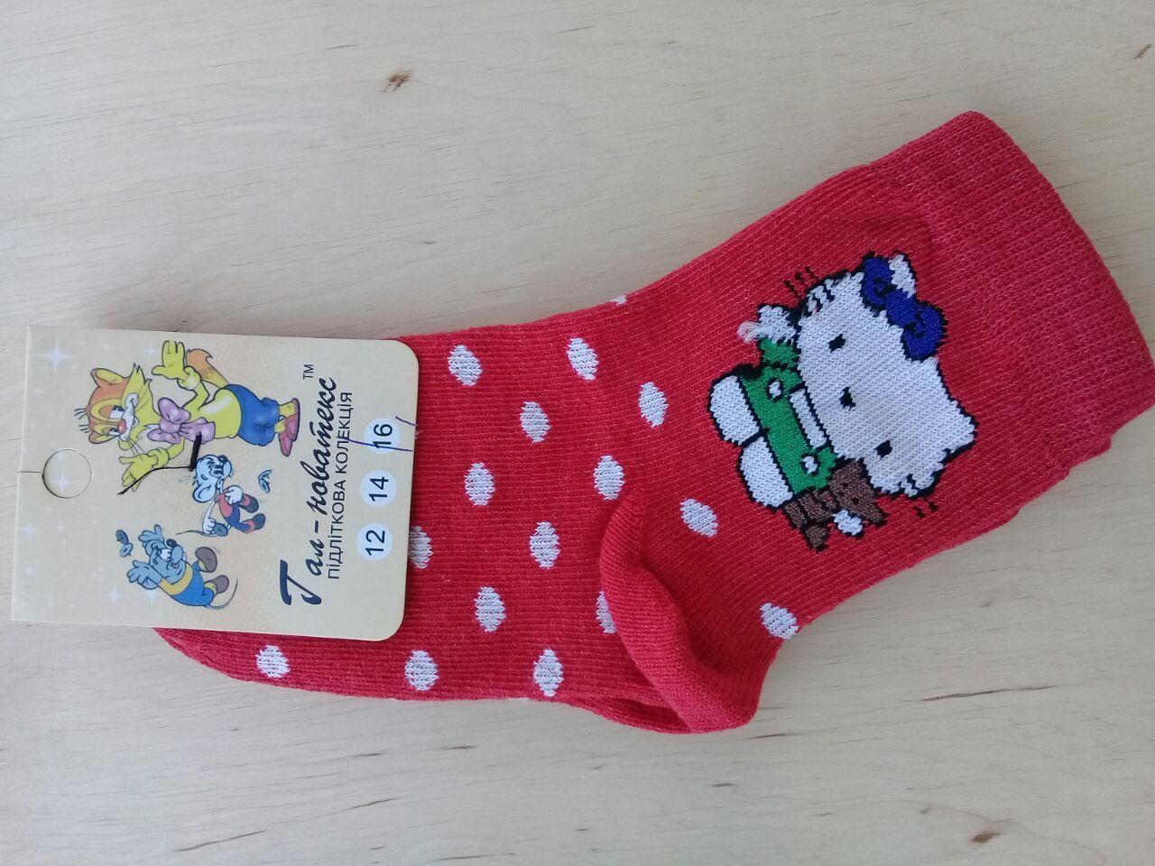 Носочки детские хлопковые  Червоноград для девочек  КИТИ