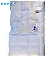 Пуховое одеяло Billerbeck Виктория К1