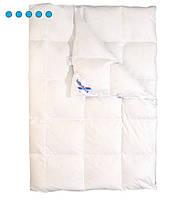 Пуховое одеяло Billerbeck Магнолия К2