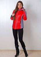 Стильная женская зимняя курточка в ярких тонах