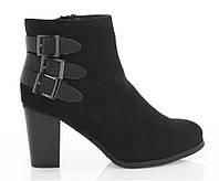 Женские ботинки SHANIA    , фото 1