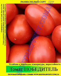 Насіння томату «Переможець» 100 г