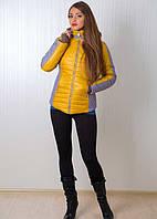 Желто-серая зимняя курточка с капюшоном